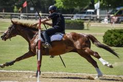aaociazione-equestre-vallesina-09-05-2021-23