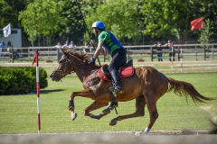 aaociazione-equestre-vallesina-09-05-2021-3