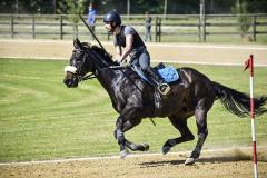 aaociazione-equestre-vallesina-09-05-2021-8