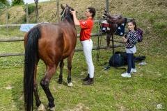 scuola-equitazione-1-2-1