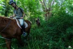 scuola-equitazione-1-4